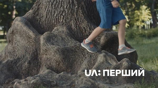 Показники «UA: Першого» у 2019 році впали по всіх основних аудиторіях
